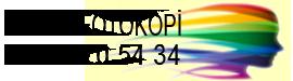 Renkli Fotokopi